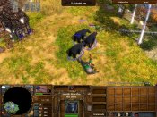 Age of Empires III – War Chiefs - Immagine 9
