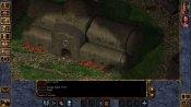 Baldur's Gate: Enhanced Edition - Immagine 8
