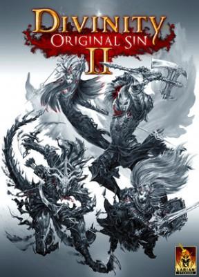 Divinity: Original Sin 2 PC Cover
