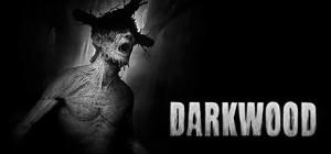 Copertina Darkwood - PC