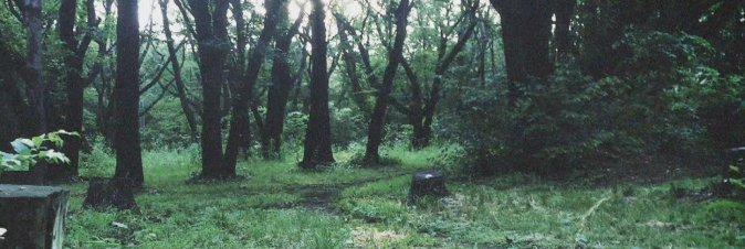 Un survival horror firmato Kojima? Impossibile