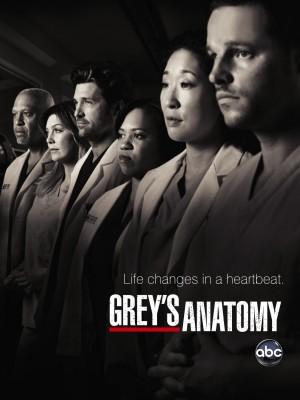 Grey's Anatomy cover