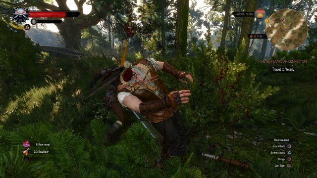 The Witcher 3: Wild Hunt - Immagine 152493