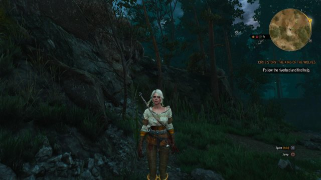 The Witcher 3: Wild Hunt - Immagine 152499