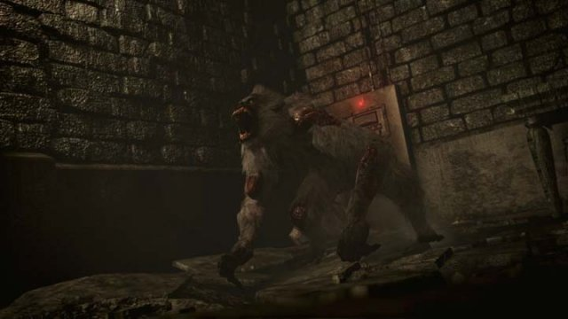 Resident Evil 0 HD Remaster immagine 173969