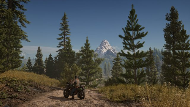 Days Gone - Immagine 192049