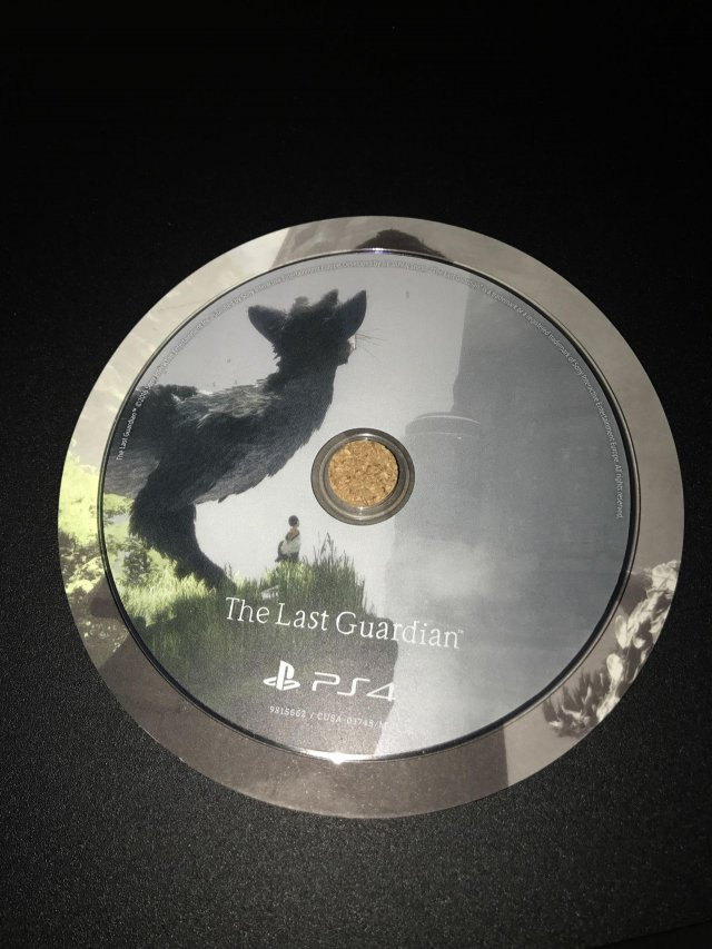 The Last Guardian - Immagine 197144