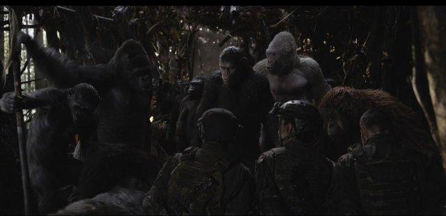 The War - Il Pianeta delle Scimmie - Immagine 201934