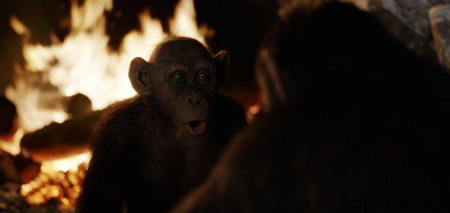 The War - Il Pianeta delle Scimmie - Immagine 201935