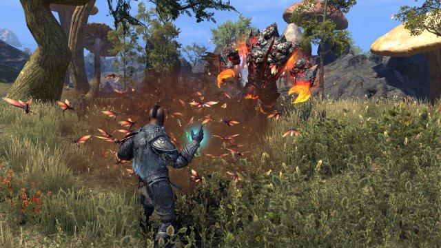 The Elder Scrolls Online: Morrowind immagine 199511