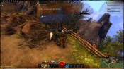 Guild Wars 2 - Screenshot 5